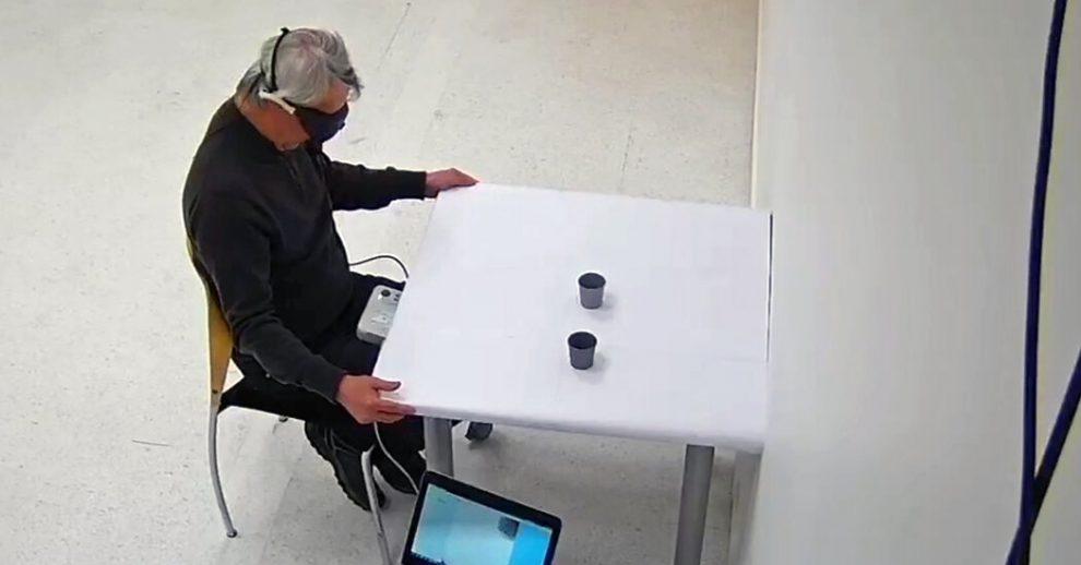 Los científicos restauraron parcialmente la vista de un ciego con la nueva terapia genética