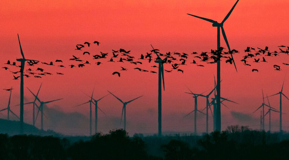A nuestra respuesta al cambio climático le falta algo importante, dicen los científicos